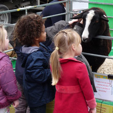 Fishers Mobile Farm visit to Appletree Nursery, Lancaster