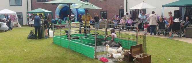 Fishers Mobile Farm - Finney House Care Home - August 2017