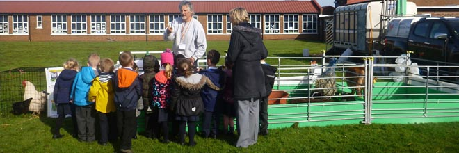 Fishers Mobile Farm visit to Meadowbank Primary, Stockport