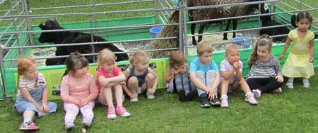 Fishers Mobile farm visit to YMCA Sefton