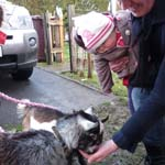 Dillon's Birthday Party in Burnley - meeting Plum & Betty
